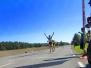 Maraton SM inlines 8 september 2013