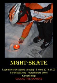Night Skate_02b